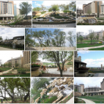 Paradise….J.W. Marriott San Antonio Hill Country Resort & Spa