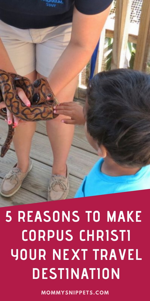 5 Reasons to make Corpus Christi your next travel destination- MommySnippets.com (1)