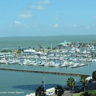 The Omni Bayfront … Corpus Christi's Hotel with a View!