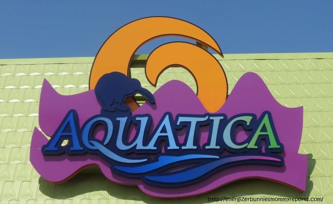 Seaworld Tours Bahamas