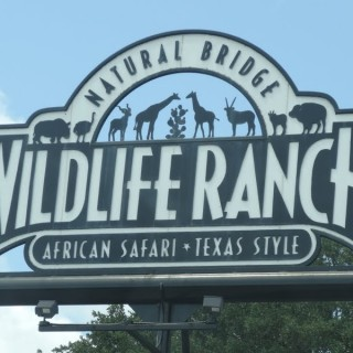 The only African Safari with a Texan Twist!