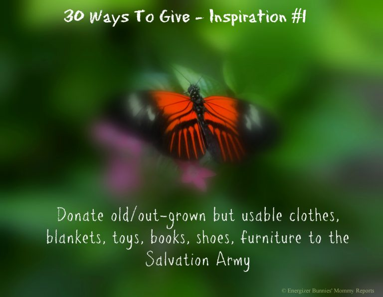 30 Ways To Give – Donate to the Salvation Army {#30DayGive}