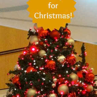 STOP!…READ!!…Christmas is 18 days away