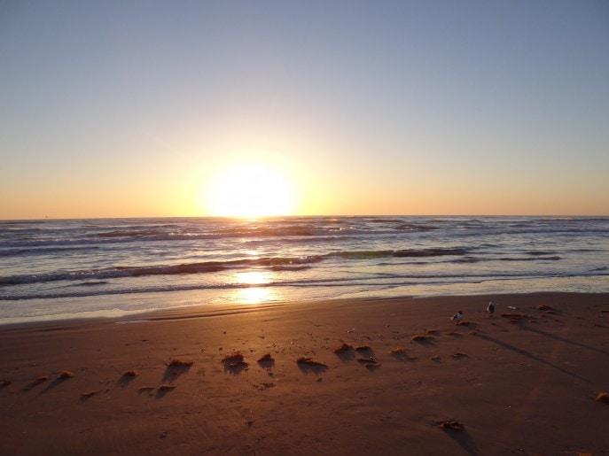 Breakfast South Padre Island Tx