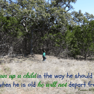 {Almost} Wordless Wednesday – Train Up A Child