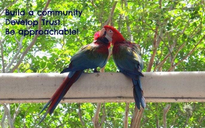 Build a community. Develop Trust.  Be approachable!