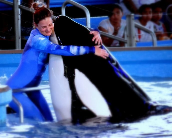 Shamu: This is Love -Photo Copyright: Mommy Snippets
