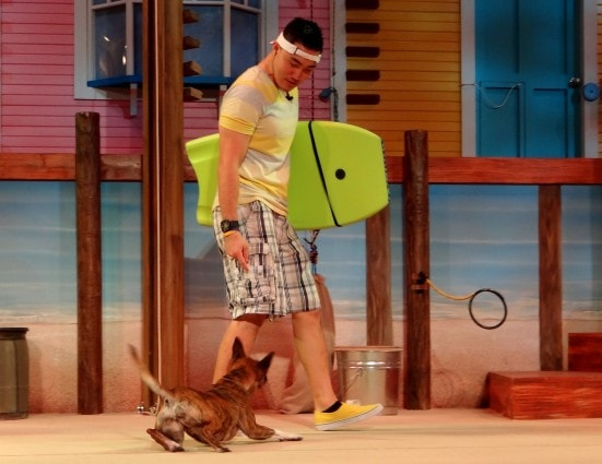 Pets Ahoy, SeaWorld San Antonio's newest show- Mommy Snippets (28)
