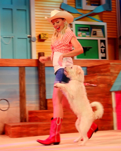 Pets Ahoy, SeaWorld San Antonio's newest show- Mommy Snippets (33)