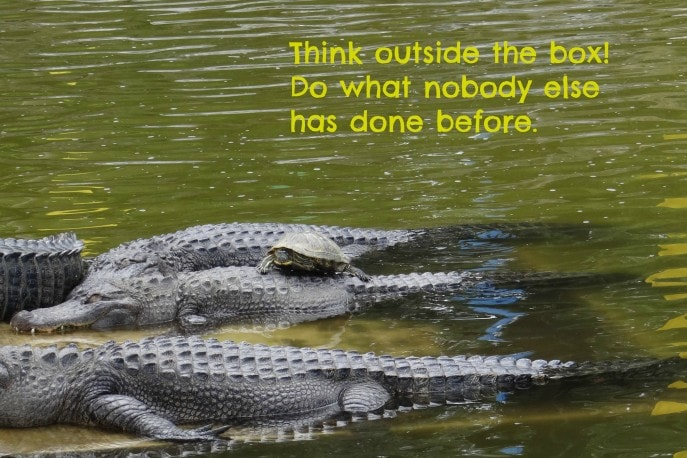 Think outside the box. Do what nobody else has done before