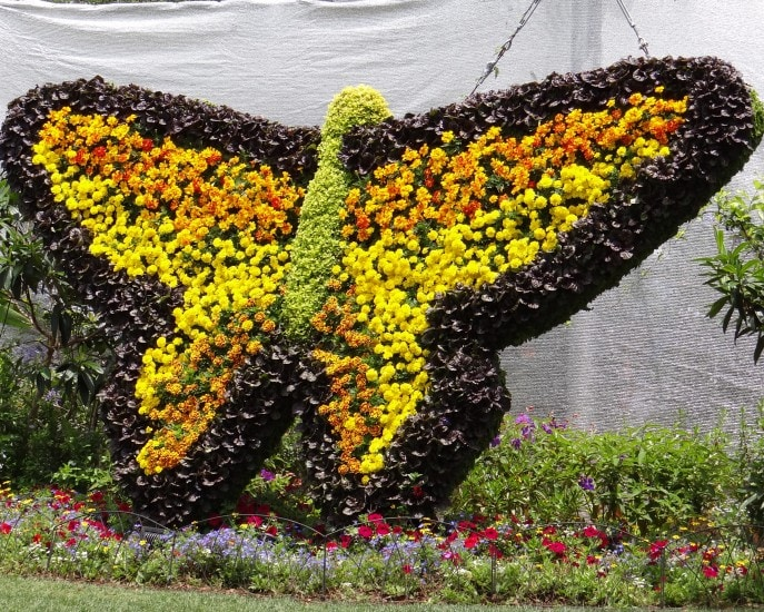 Tinker Bell's Butterfly House- the highlight of Epcot's 20th Flower and Garden Festival, Walt Disney World. {Travel with Mommy Snippets} (24)