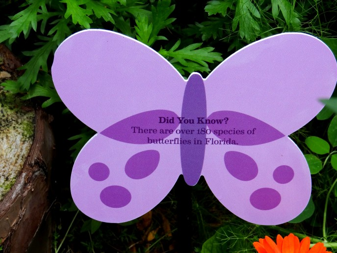 Tinker Bell's Butterfly House- the highlight of Epcot's 20th Flower and Garden Festival, Walt Disney World. {Travel with Mommy Snippets} (3)