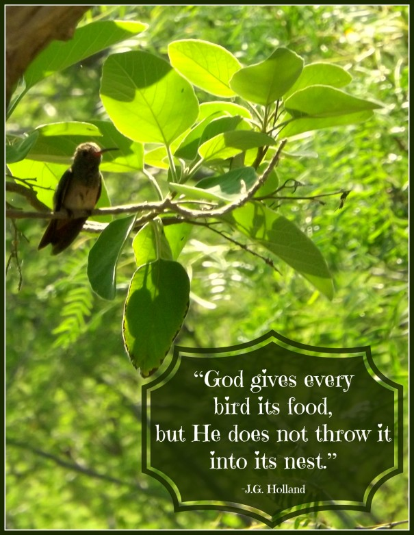 God gives every bird quote