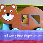 Roll Along Bear Shape Sorter