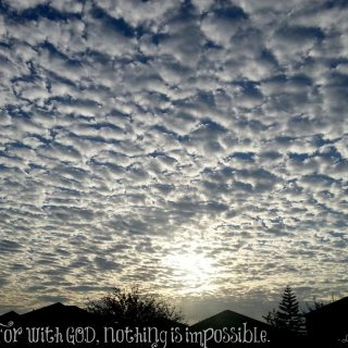 Nothing is impossible : {Almost} Wordless Wednesday