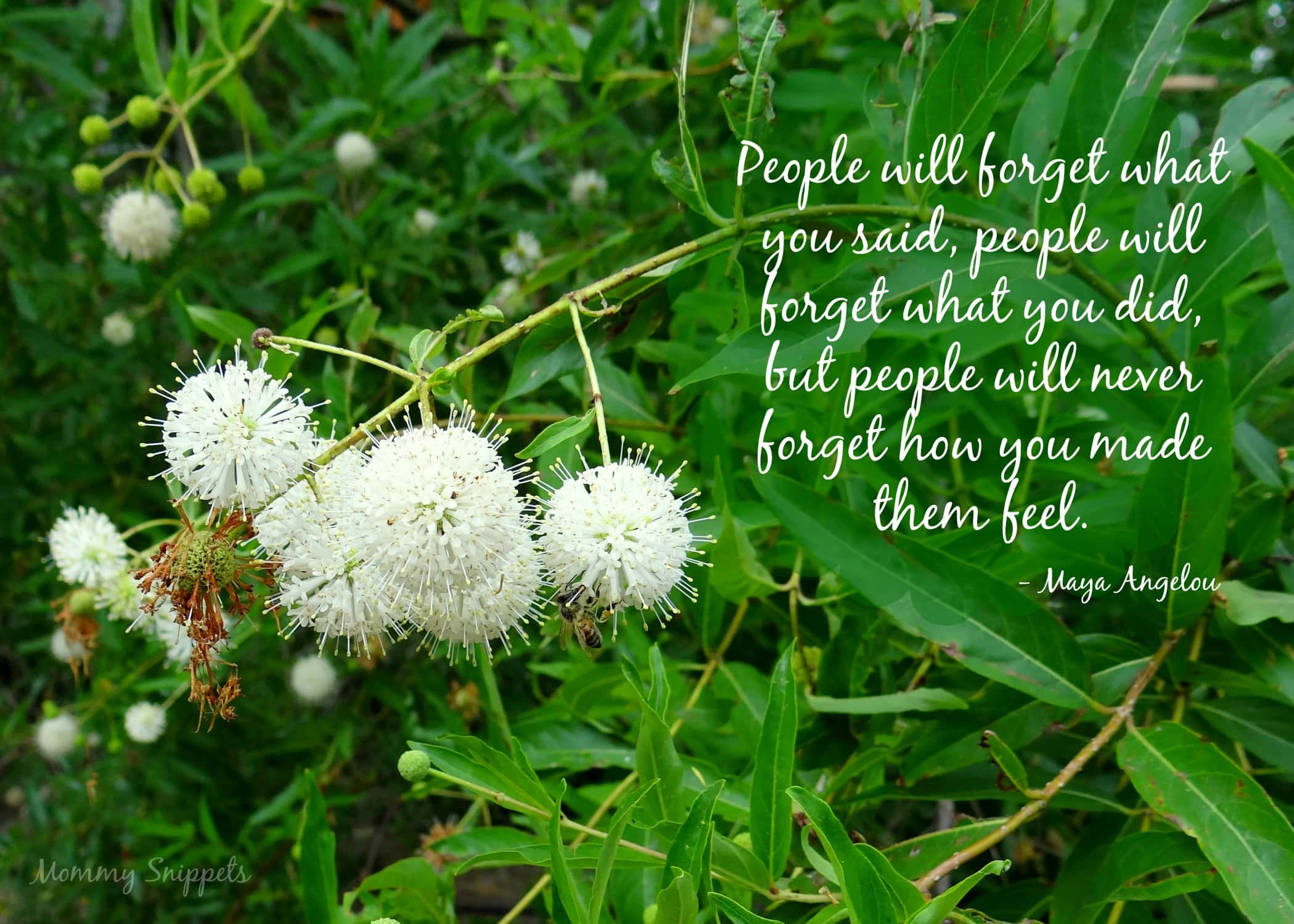 Maya Angelou Quote I Want to Be Remembered