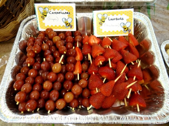 Food ideas for an Insect or Bug themed party- Mommy Snippets 5