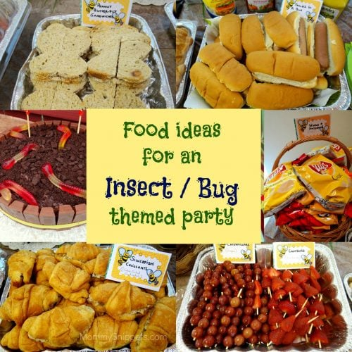 Food ideas for an Insect or Bug themed party- Mommy Snippets
