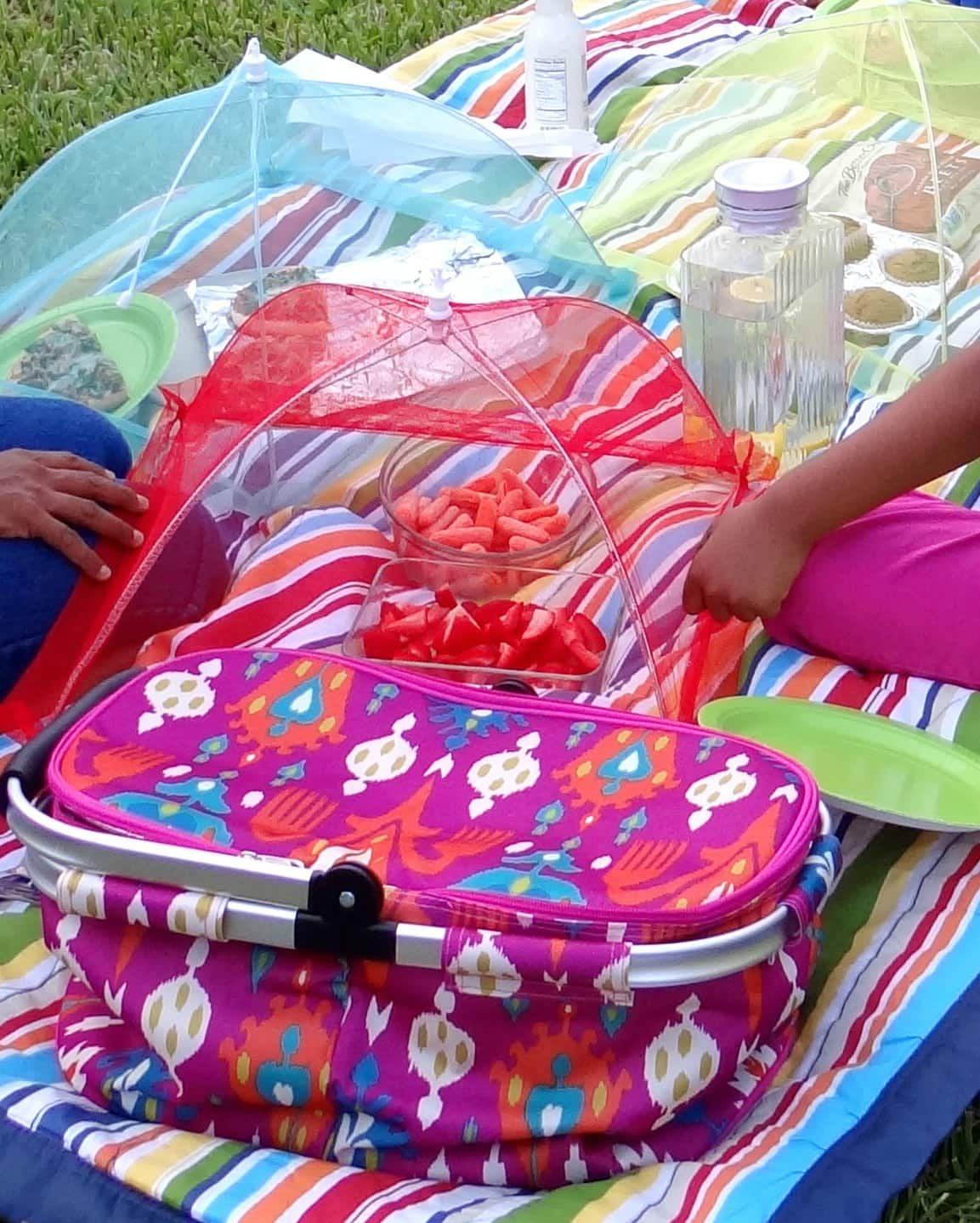 MommySnippets_SWA_PicnicTote