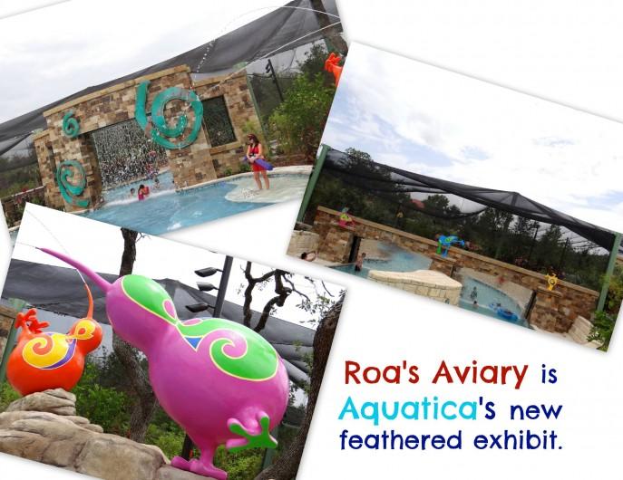 Roa's Aviary is Aquatica's new feathered exhibit.