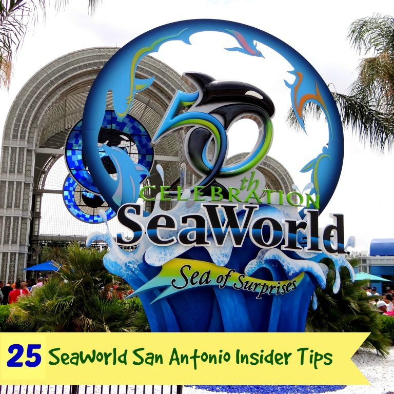 25 of the Best SeaWorld San Antonio Tips for Your Next Visit