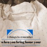 5 things to remember when you bring home your Preemie {RSV and #PreemieProtection}