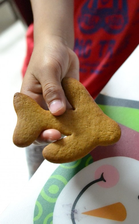 Gingerbread Planes Recipe (1)