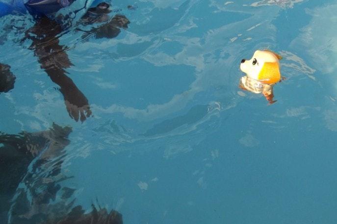 Swimways (20)
