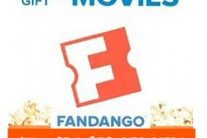 Win 1 of 4 $50 Fandango Gift Cards (Ends 7-5-2015 on Mommy Snippets)