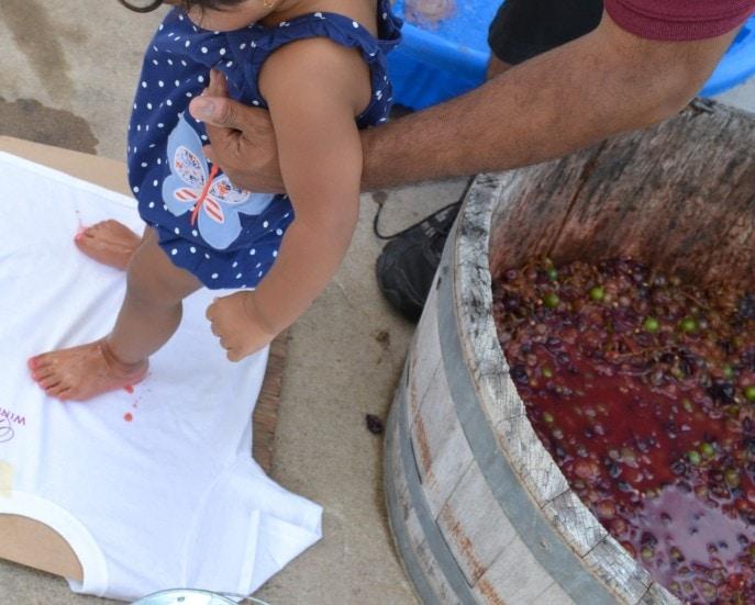 Grape_stomping_Windy_Winery_Brenham_Texas_#VisitBrenham_Travel (75)