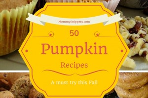 50 must try Pumpkin Recipes this Fall- MommySnippets.com