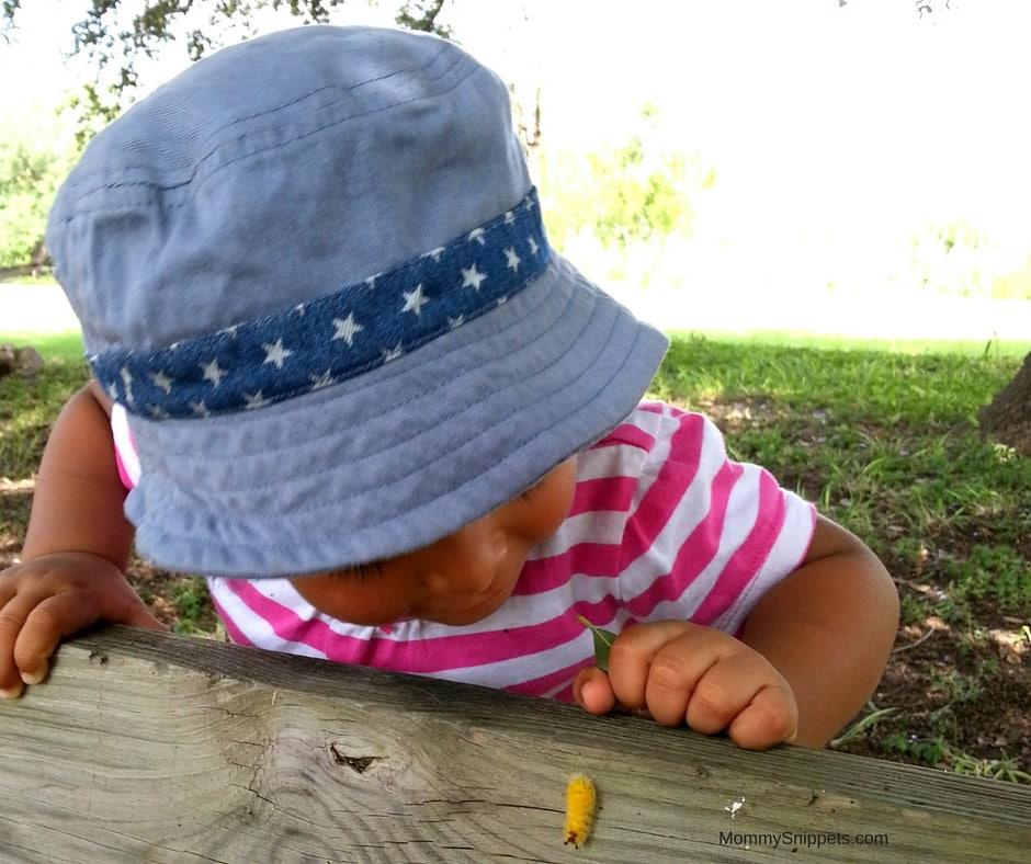 Baby studying a bug- Photo copyright-MommySnippets.com