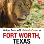 Things to do in Fort Worth if you love Animals