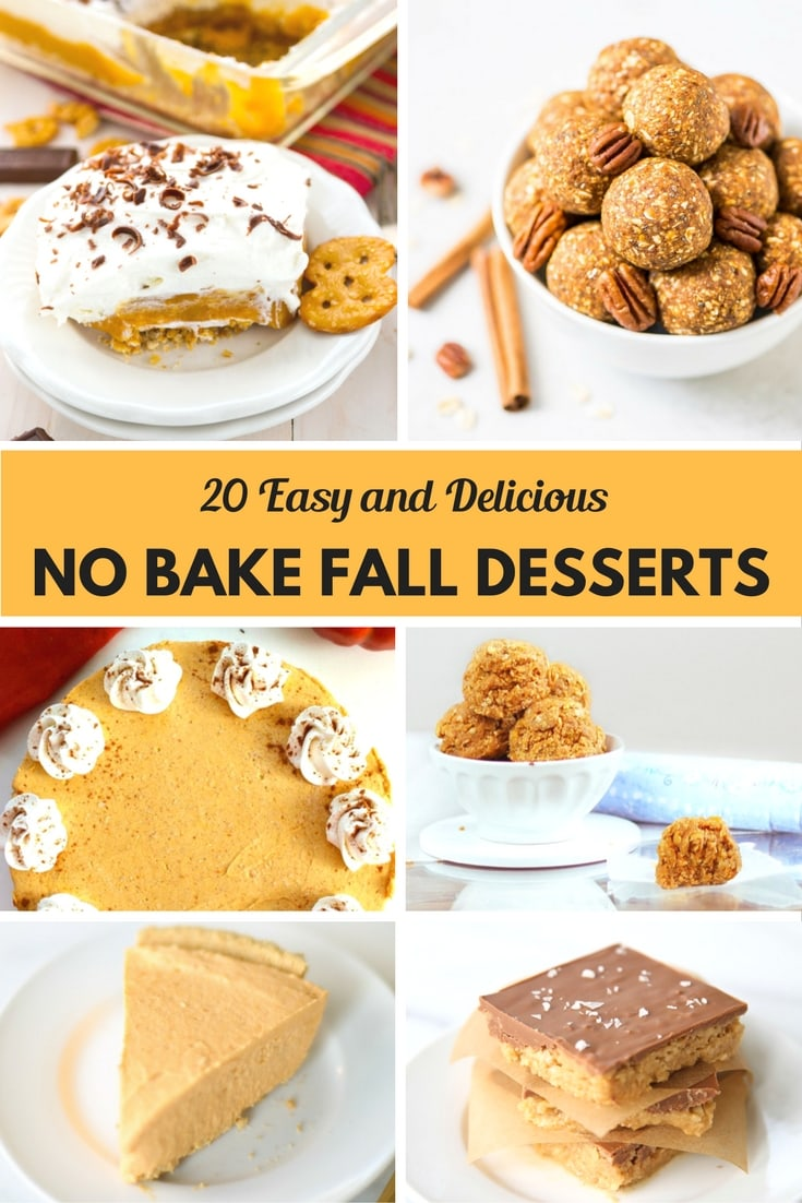 20 Easy And Delicious No Bake Fall Desserts