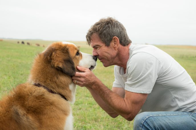 A Dog's Purpose opens in theaters on January 27th