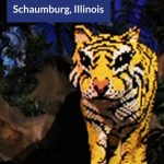 Indoor Attractions to Visit in Schaumburg, Illinois