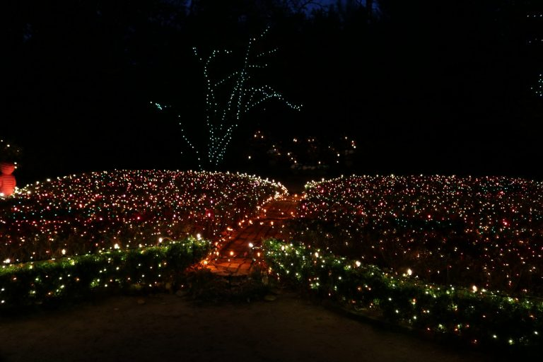 The Christmas Village at Bayou Bend, Houston is not to be missed!