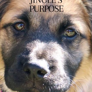 A Dog's Purpose opens in theaters on January 27th (+ Giveaway)