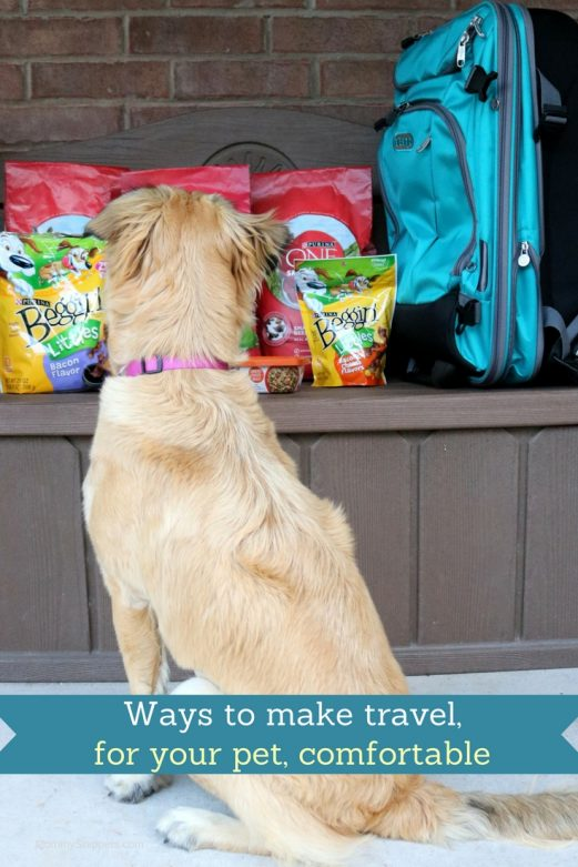Ways to make travel, for your pet, comfortable