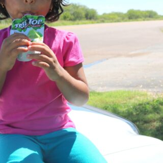 Our Survival Kit for a Long Road Trip with Kids