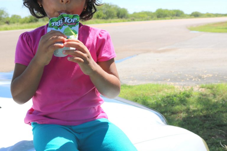Our Survival Kit for a Long Road Trip with Kids (+ Printable Road Trip Word Search Game)