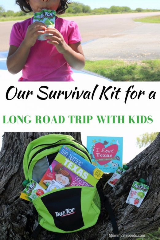 Our Survival Kit for a Long Road Trip with Kids- MommySnippets.com #NoMessTexas #sponsored