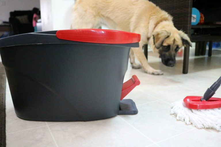 How to make cleaning up after the family dog easy on your child