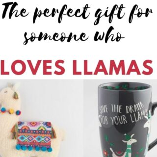 The perfect gift for someone who loves llamas