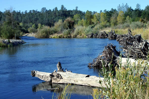 Best family friendly attractions in Redding, California