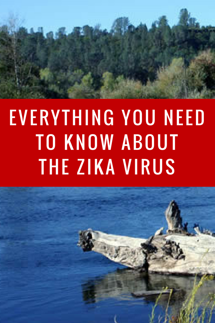 Everything you need to know about the Zika Virus_ An Infographic and Videos you will want to share!- MommySnippets.com #BuzzOffZika #ad