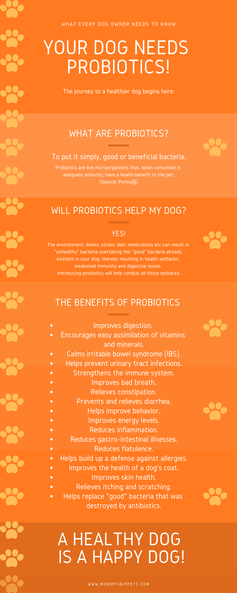 Your Dog Needs Probiotics Infographic - MommySnippets.com #ProPlanProbiotic #CollectiveBias #ad (1)