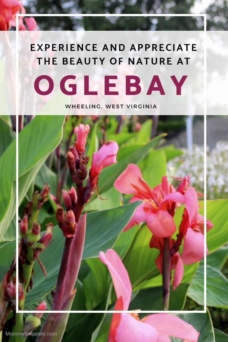 Experience and appreciate the beauty of Nature at Oglebay, Wheeling, West Virginia- MommySnippets.com #AlmostHeaven @WVTourism #Wheeling #WVPartner #MSTeamTravels #Hosted #WestVirginia