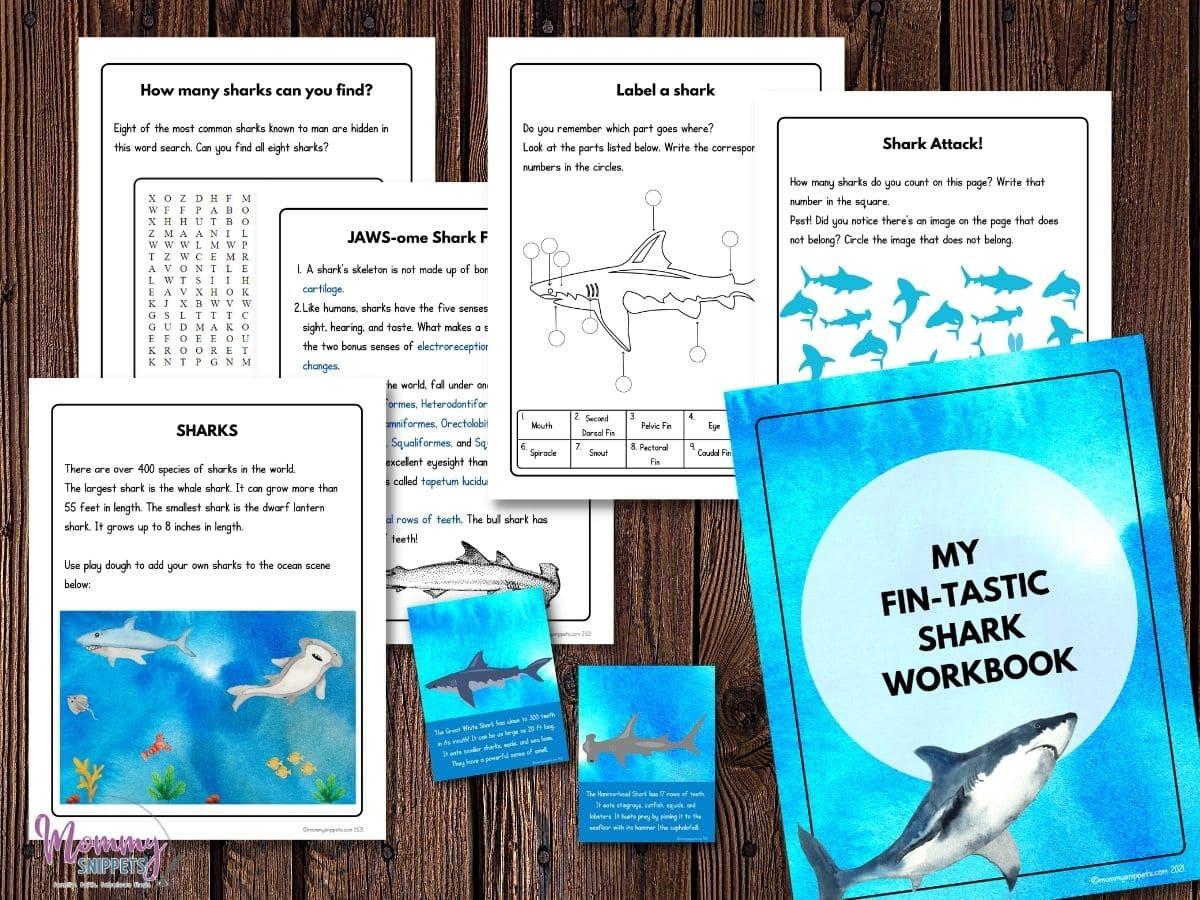 Shark Week Printable
