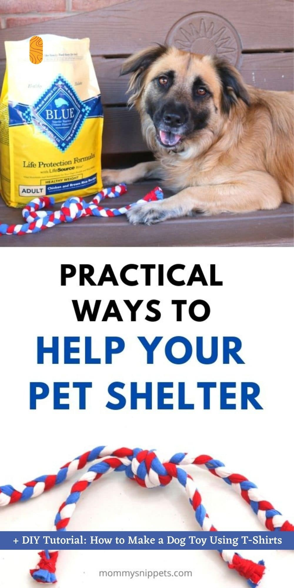 Practical Ways to Help Your Pet Shelter + DIY Tutorial: How to Make a Dog Toy Using T-shirts